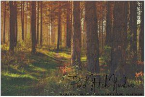 Autumn Woods Cross Stitch Pattern - Unframed